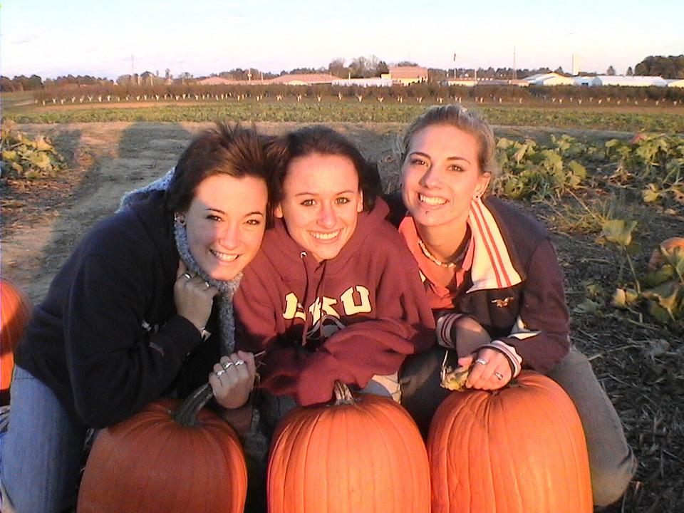 dlg-pumpkins